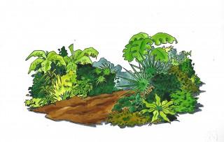 10 Dschungel
